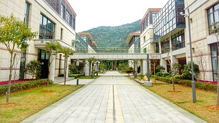 xin-hua-business-school-988871__180